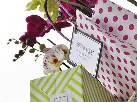 ¡Un bonito regalo para mamá! 12,90€ una Phalaenopsis (orquídea) decorada de 60cm de altura y 2 varas en flor + Tarjeta dedicatoria