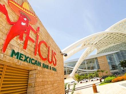 $22 por 4 Tragos especiales de la casa, tales como el Classic Margarita, Mayan Mule, Pomegranate Paloma, Red Sangria o CUALQUIER Cerveza (Ver La Experiencia para opciones adicionales) + 3 Ficus Tacos (de pollo o carne) + Chips con salsa