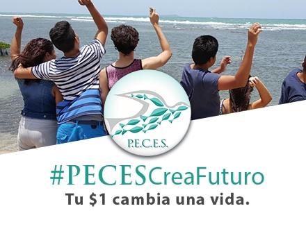 ¡Ayuda a que nuestros niños y jóvenes tengan un mejor futuro! Con tu donativo de $1, estarás aportando a inspirar y facilitar el desarollo social, educativo y económico de jóvenes del Área Este de Puerto Rico + Tu nombre aparecerá en una paloma en nuestra página