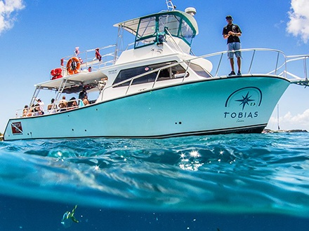 Tobias Culebra Snorkel & Beach Tours - Fajardo