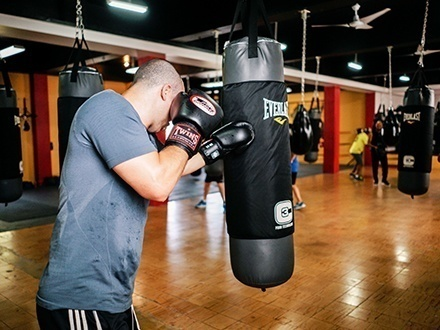 Black Dog Boxing - Calle Loíza, Santurce