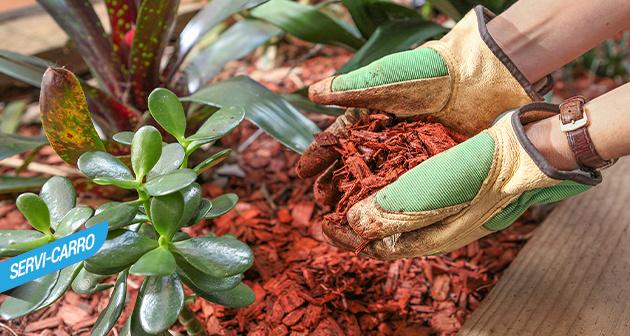 Kit De Jardinería Margo Garden - Servi-carro